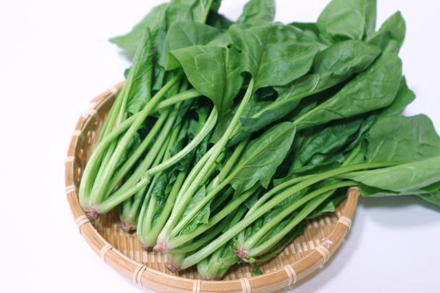 冷凍出来る野菜は何?保存&解凍方法一覧(3) ほうれん草・もやし他